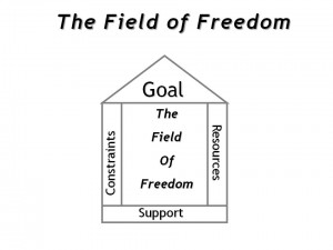 The Field of Freedom from TW Associates